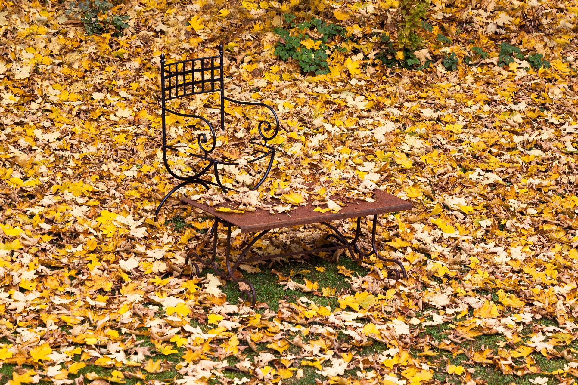 Herbst der eigentliche fr hling im garten st ger wohlf hloasen - Herbst garten ...